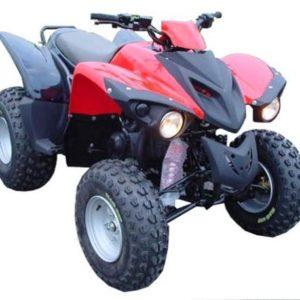 Adly Quad 300S
